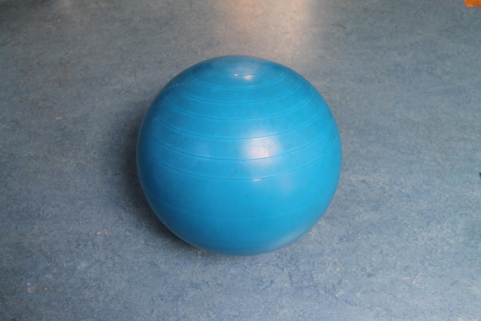 Bal Fysiotherapie de Haak
